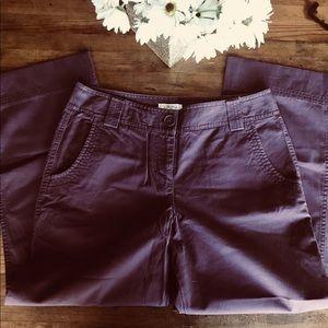 Ann Taylor Loft Cropped Purple Pants Trousers Sz 4